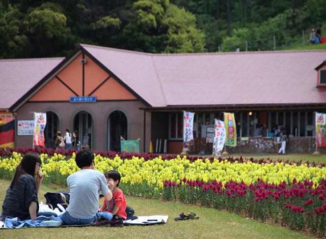 関東最大級の面積の花畑!季節のお花を楽しもう4