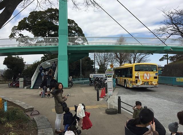 野毛山動物園5