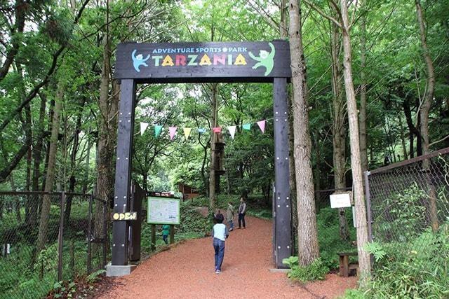 ターザニア