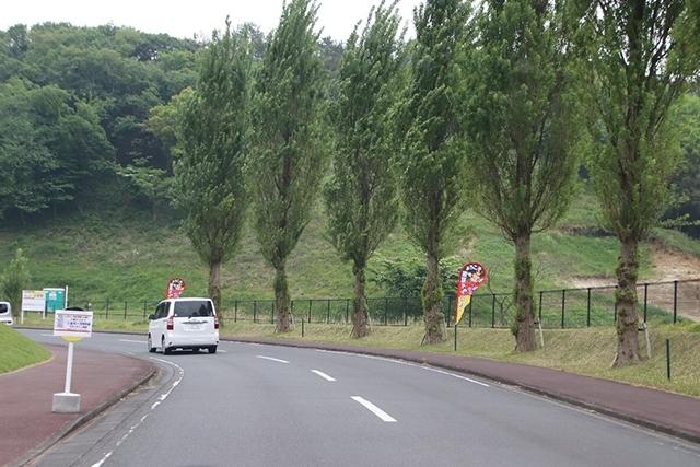東京ドイツ村 道路