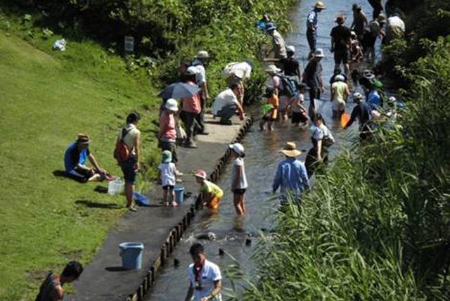 神奈川県の川遊びスポット10選 大人も子供も楽しめる!