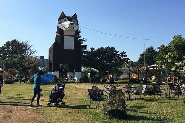 『つくばわんわんランド』日本最大級の犬猫テーマパークと周辺情報!