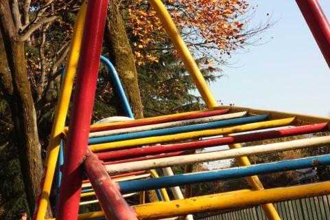 【茨城】子供も大人も!体を動かす屋外アスレチック公園6選!