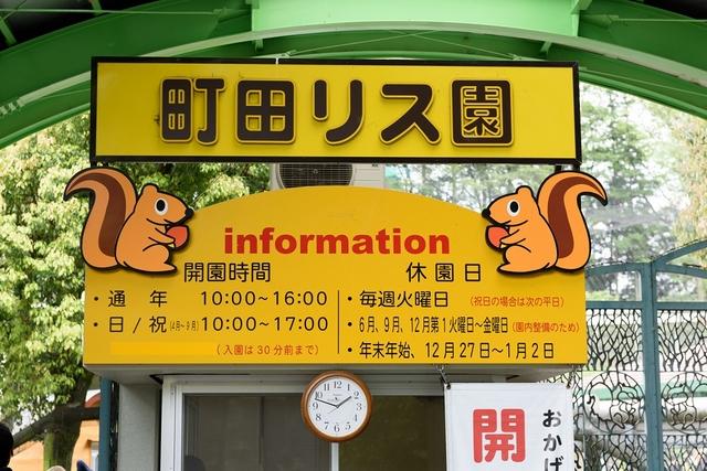 関東のふれあい動物広場 (6)