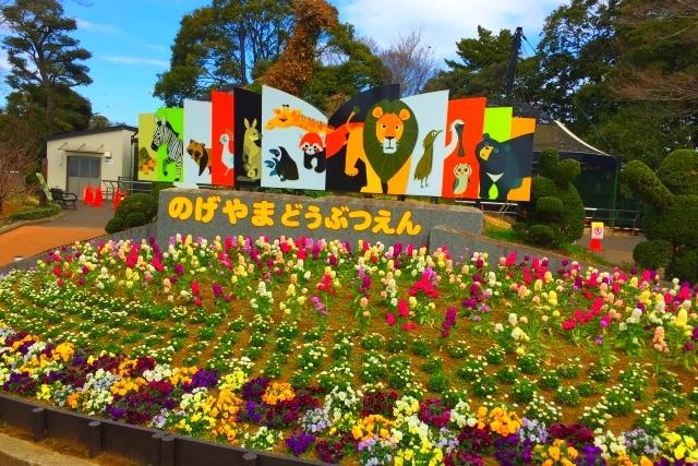 横浜市『野毛山動物園』入園無料の動物園を徹底攻略!お土産情報も!