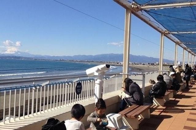 『新江ノ島水族館』えのすいでランチ!レストラン・お食事情報!