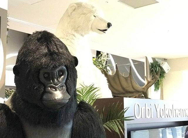 オービィ横浜に展示している動物の模型です。