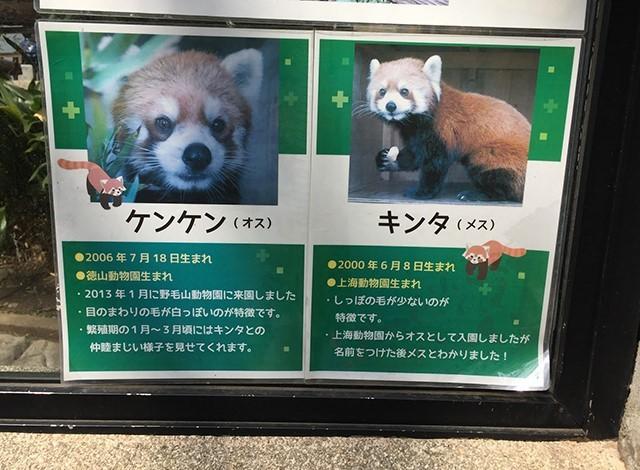 野毛山動物園100種以上の動物2