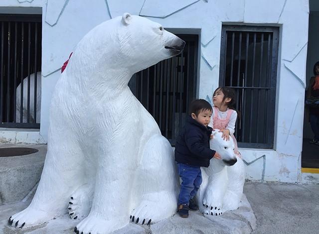 野毛山動物園100種以上の動物20