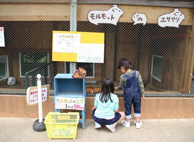 東京ドイツ村 - こども動物園 (4)