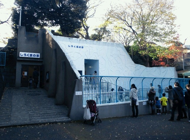 野毛山動物園100種以上の動物19