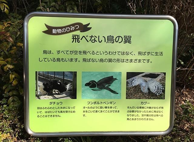 野毛山動物園100種以上の動物25