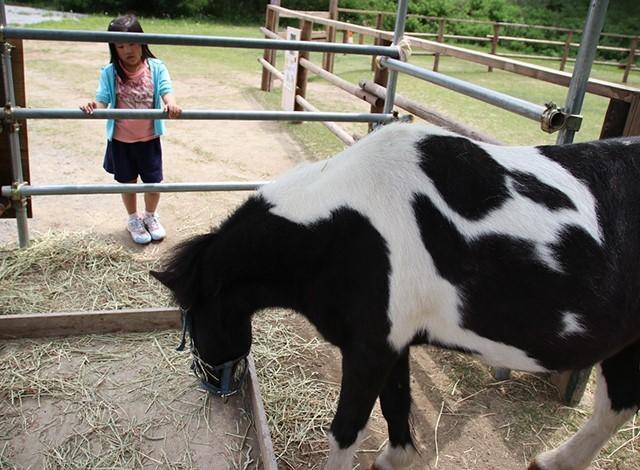 東京ドイツ村 - こども動物園 (44)