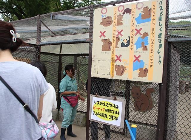 東京ドイツ村 - こども動物園 (14)