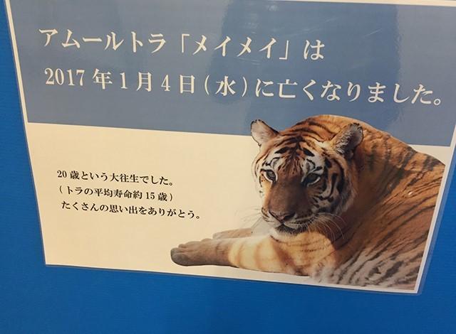 野毛山動物園100種以上の動物8