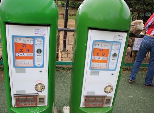 東京ドイツ村 - こども動物園 (23)