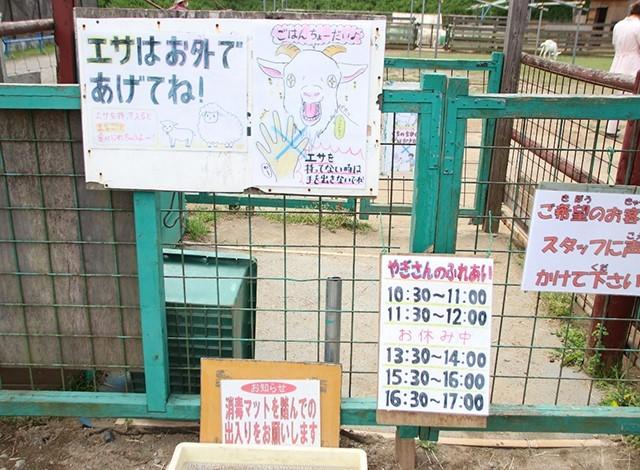東京ドイツ村 - こども動物園 (25)