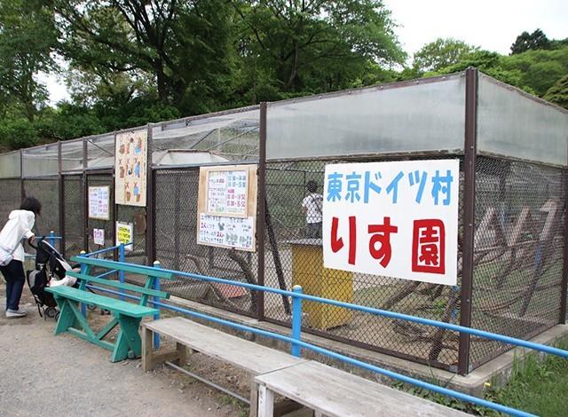 東京ドイツ村 - こども動物園 (13)