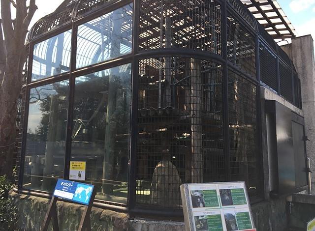 野毛山動物園100種以上の動物35