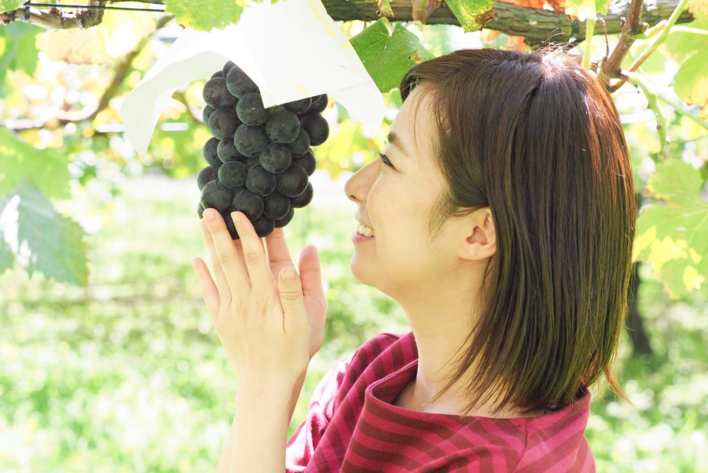 東京で果物狩り!ぶどう・ブルーベリーなど人気のフルーツ農園情報!