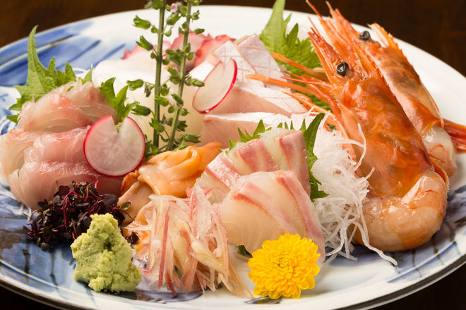 完全個室【渋谷】お刺身の美味しい居酒屋5選|新鮮な海鮮を味わう