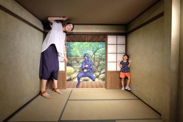 東京トリックアート迷宮館 (6)