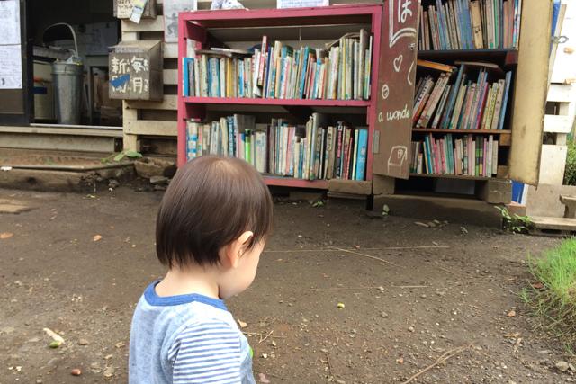 渋谷はるのおがわプレーパーク (2)