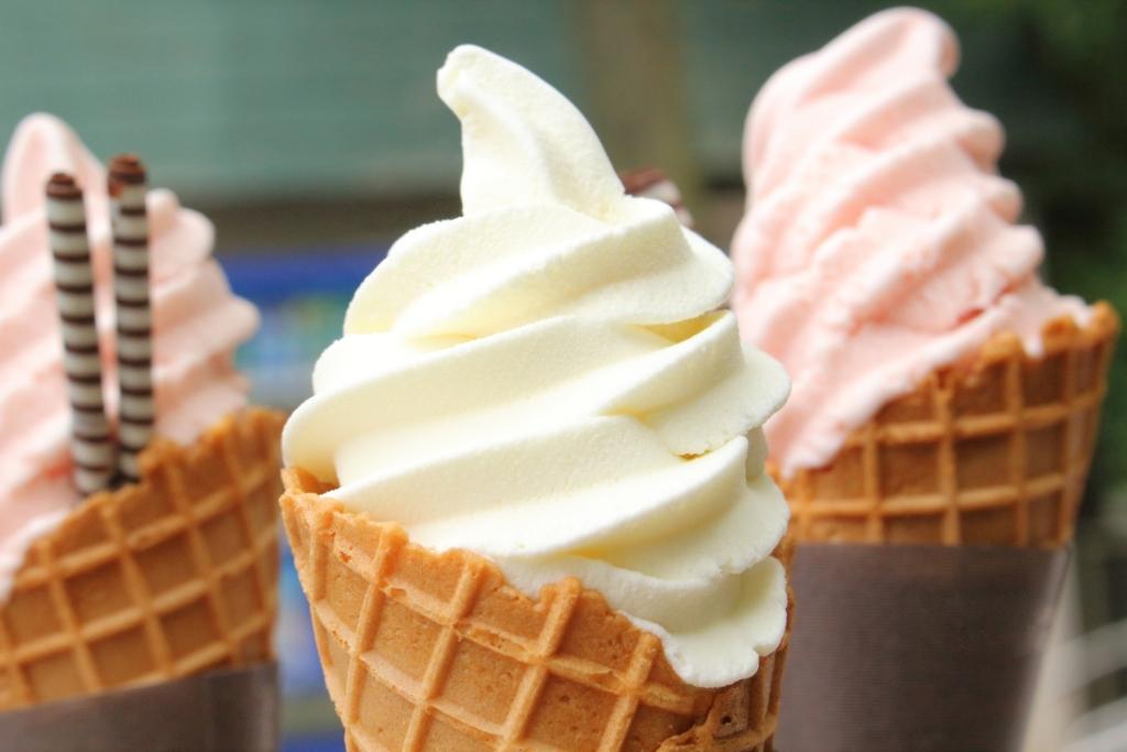 八景島シーパラダイス ソフトクリーム