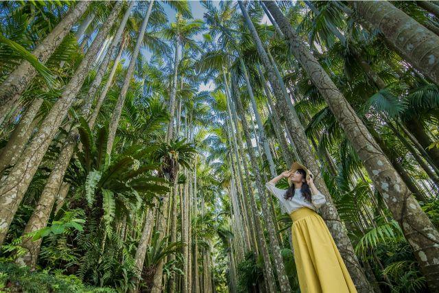 【最大35%割引】東南植物楽園の入場料金・クーポンチケット情報!