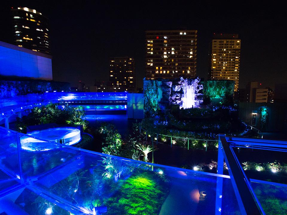 サンシャイン水族館 マリンガーデン夜景 jpg