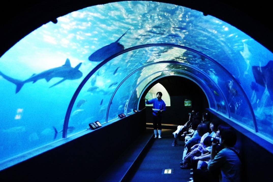 串本海中公園 アクアトンネル