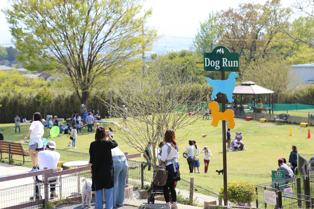 世界名犬牧場 ドッグラン