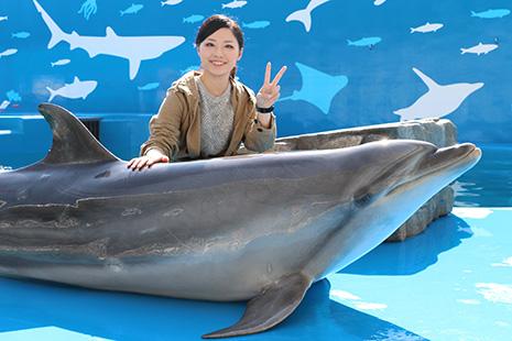 仙台うみの杜水族館 イルカタッチ&フォト