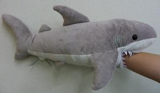 しながわ水族館 ガブっとサメ