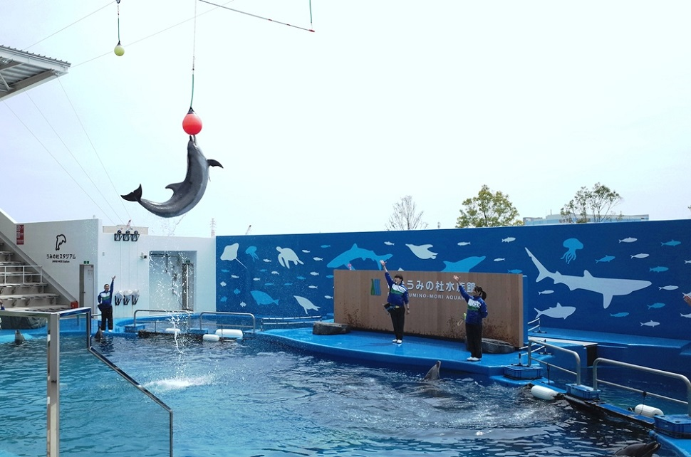 (2)仙台うみの杜水族館 割引
