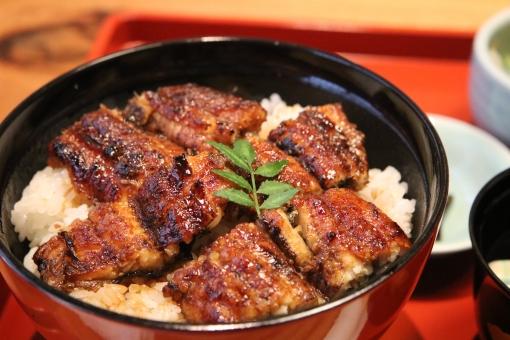 【人気店】登米市で美味しいと評判のうなぎ屋さんランキング!