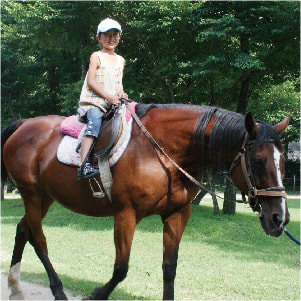 阿蘇カドリードミニオン-乗馬体験