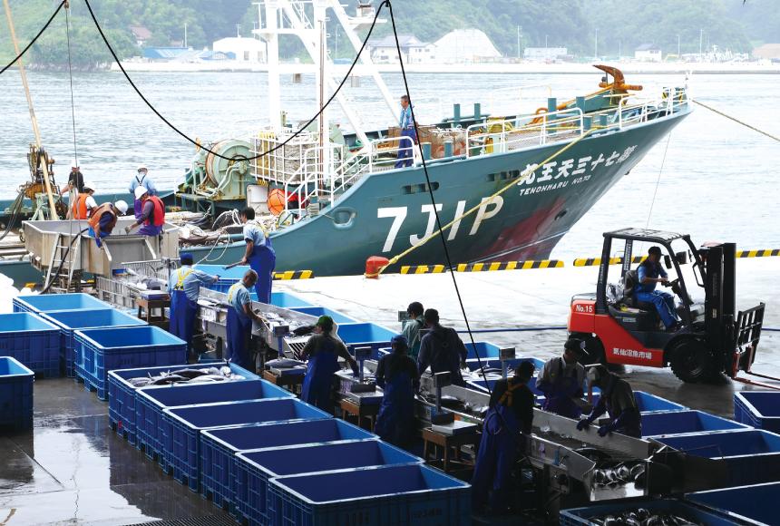 【人気観光地】「気仙沼市魚市場」で新鮮な海の幸を見る!食べる!