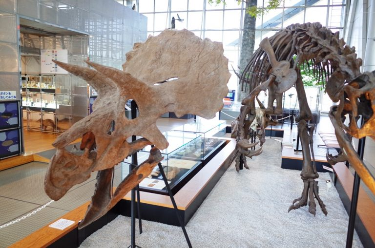 (9)仙台市科学館