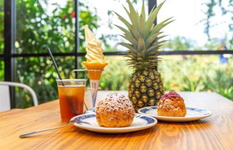 ナゴパイナップルパーク-パイナップルカフェ