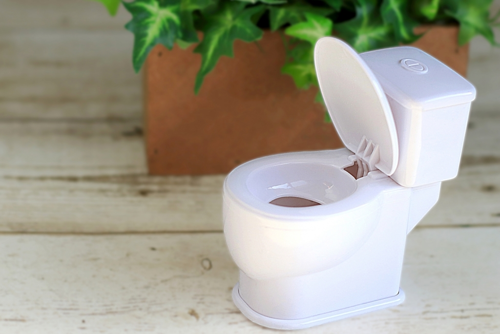 トイレ掃除おすすめ洗剤13選。黒ずみ黄ばみを強力洗浄!流すだけOKも