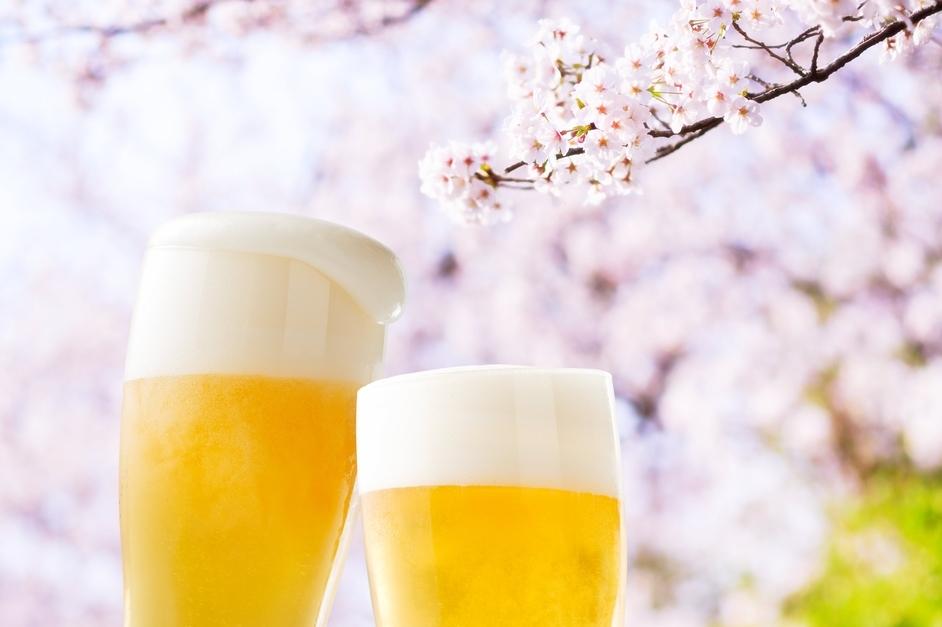 お花見で喜ばれる!コンビニ持ち寄り24選。お弁当や桜のお酒、スイーツも