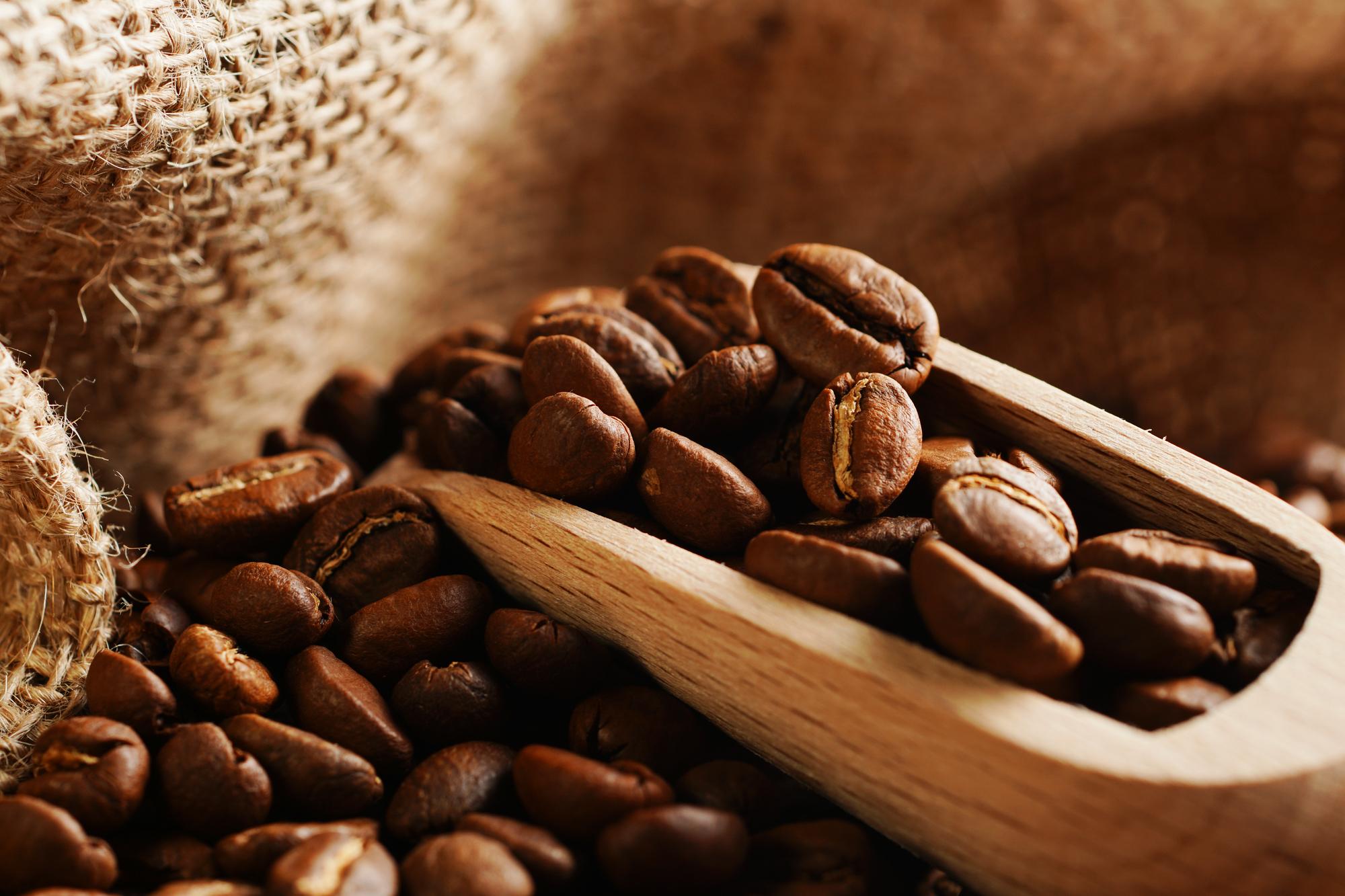 美味しい コーヒー豆