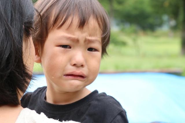 泣く子ども 子供 鼻ぶつけた 腫れ 何科