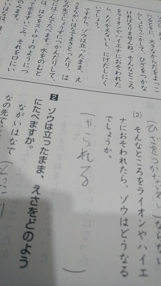 renren_kumiさんの珍回答