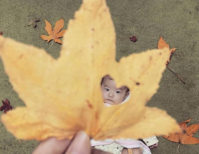 reina.017.63さんの秋の寝相アート