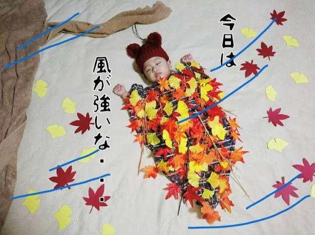 ___yuri__tsubame___さんの秋の寝相アート