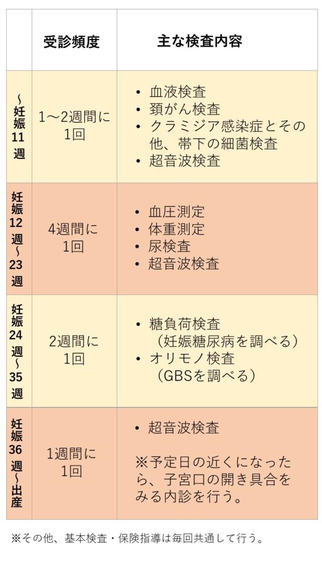 妊婦検診 スケジュール表
