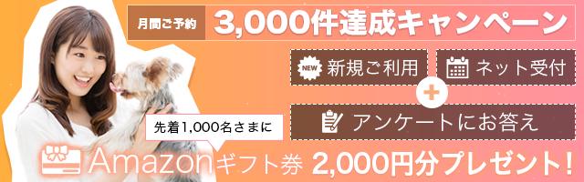 3000件達成キャンペーン