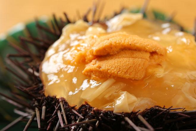 日本料理 かこみ_15